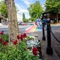 COURTENAY_BC_June 23_2018: BC: Downtown Courtenay, building exteriors, summer flowers, Sims Park, Puntledge Park. Photo by Kim Stallknecht